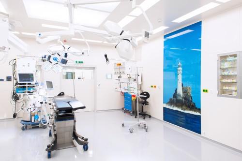 Obrázek k referenci Institut klinické a experimentální medicíny, Praha, Česká republika